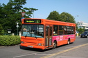 Red Rose RR02BUS