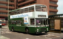 Luton and District EFE33T