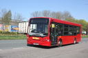Red Rose YX61FZE