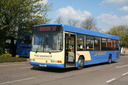 Whippet H13WCL T354JWA